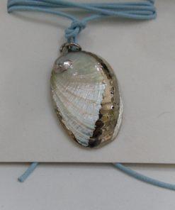 vera conchiglia con decorazione in argento