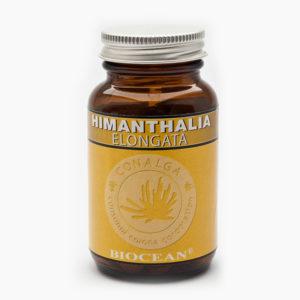 HIMANTHALIA-ELONGATA